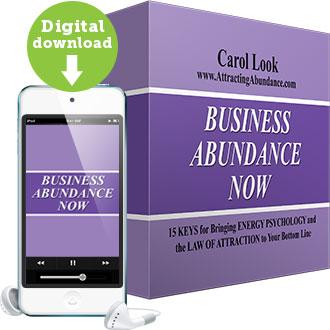 Business Abundance Now Program