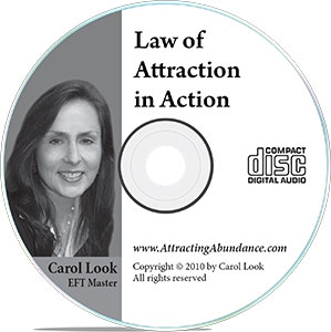 Law of Attraction In Action CD